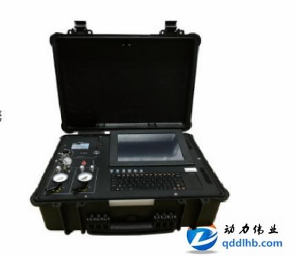 林芝Model 3200型便携式非甲烷总烃在线分析仪