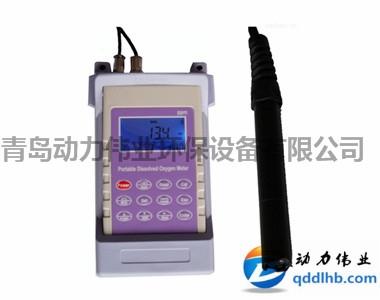 DL-R10型便携式